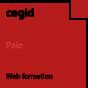 Web : Paramétrez les éléments préparatoires à la génération de la DSN (1/2) - Cegid Quadra